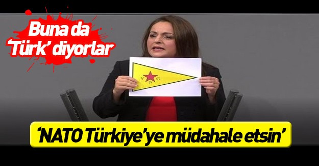 NATO'yu Türkiye'ye müdahaleye çağırdı